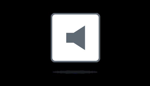 Integrated speaker
